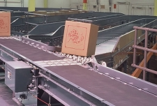 pop up wheel sorter conveyor